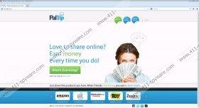 Api.paltip.com