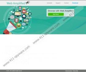 Web Amplified