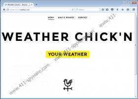 Weather Chickn