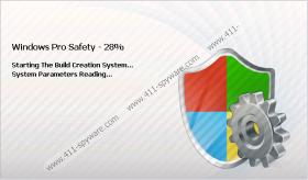 Windows Pro Safety