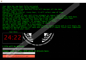 Anonymous Ransomware