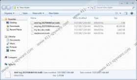 AslaHora Ransomware
